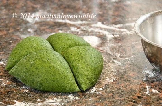 Spinach_Fettucine5