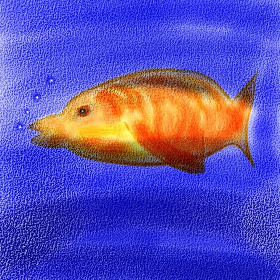 Watercolor-Fish-JPG